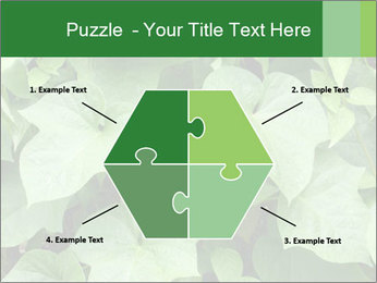Green Foliage In Garden PowerPoint Template - Slide 40