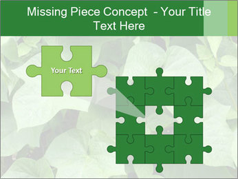 Green Foliage In Garden PowerPoint Template - Slide 45