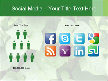 Green Foliage In Garden PowerPoint Template - Slide 5