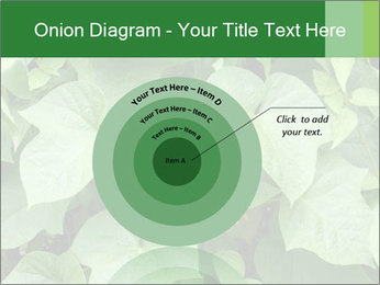 Green Foliage In Garden PowerPoint Template - Slide 61