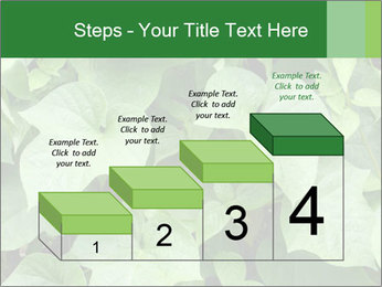 Green Foliage In Garden PowerPoint Template - Slide 64