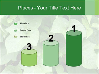 Green Foliage In Garden PowerPoint Template - Slide 65