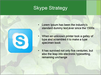 Green Foliage In Garden PowerPoint Template - Slide 8