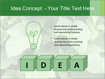 Green Foliage In Garden PowerPoint Template - Slide 80