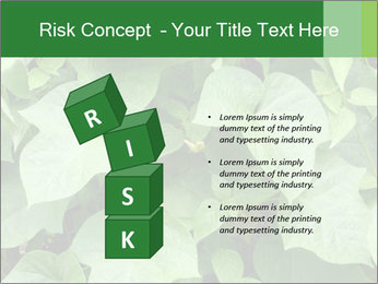 Green Foliage In Garden PowerPoint Template - Slide 81