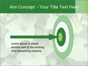 Green Foliage In Garden PowerPoint Template - Slide 83