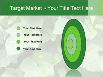 Green Foliage In Garden PowerPoint Template - Slide 84
