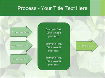 Green Foliage In Garden PowerPoint Template - Slide 85