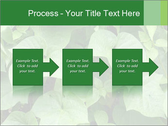Green Foliage In Garden PowerPoint Template - Slide 88