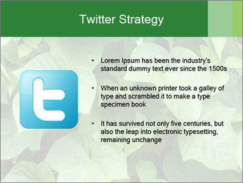 Green Foliage In Garden PowerPoint Template - Slide 9