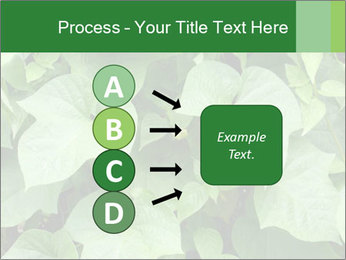 Green Foliage In Garden PowerPoint Template - Slide 94