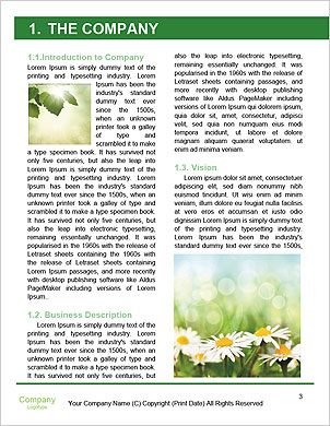 0000089169 Word Template - Page 3