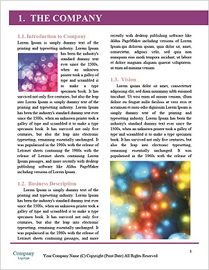 0000089174 Word Template - Page 3