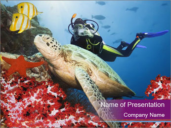 Diving Experience PowerPoint Template - Slide 1
