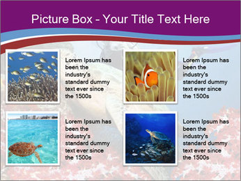 Diving Experience PowerPoint Template - Slide 14