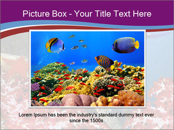 Diving Experience PowerPoint Template - Slide 15
