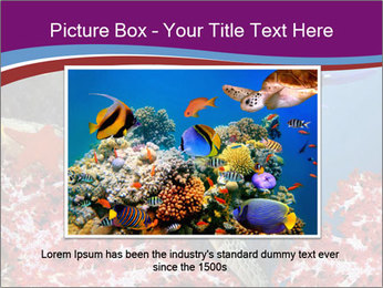 Diving Experience PowerPoint Template - Slide 16