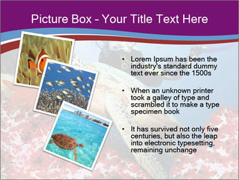Diving Experience PowerPoint Template - Slide 17