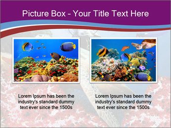 Diving Experience PowerPoint Template - Slide 18