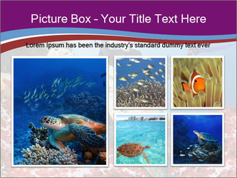 Diving Experience PowerPoint Template - Slide 19