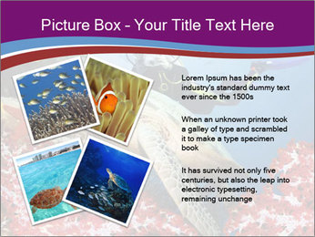 Diving Experience PowerPoint Template - Slide 23