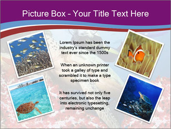Diving Experience PowerPoint Template - Slide 24