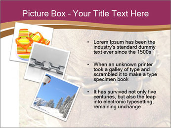 Chain For Elephant PowerPoint Template - Slide 17