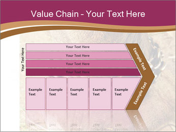 Chain For Elephant PowerPoint Template - Slide 27