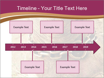 Chain For Elephant PowerPoint Template - Slide 28