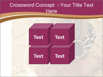 Chain For Elephant PowerPoint Templates - Slide 39