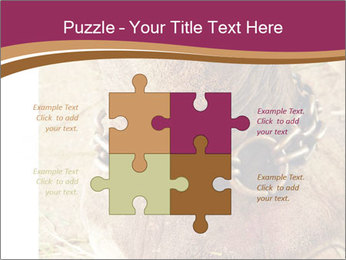 Chain For Elephant PowerPoint Template - Slide 43