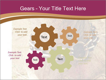 Chain For Elephant PowerPoint Template - Slide 47