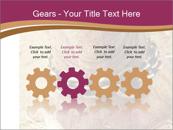 Chain For Elephant PowerPoint Template - Slide 48