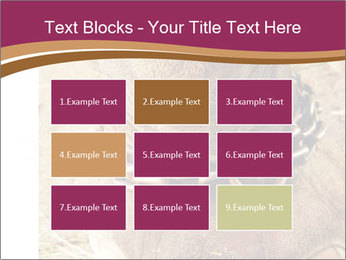 Chain For Elephant PowerPoint Template - Slide 68