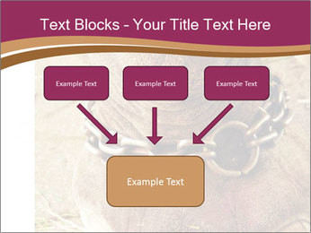 Chain For Elephant PowerPoint Template - Slide 70