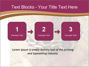 Chain For Elephant PowerPoint Template - Slide 71