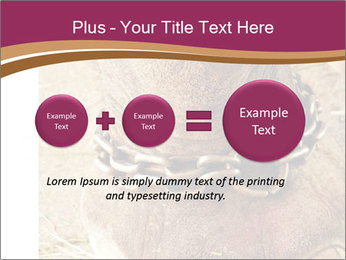 Chain For Elephant PowerPoint Templates - Slide 75