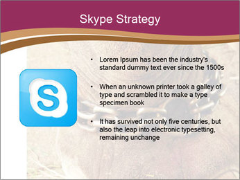 Chain For Elephant PowerPoint Template - Slide 8