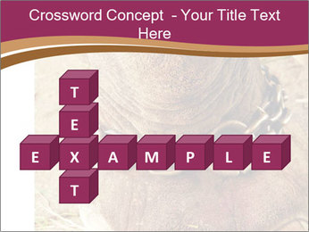 Chain For Elephant PowerPoint Template - Slide 82