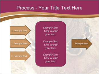 Chain For Elephant PowerPoint Template - Slide 85