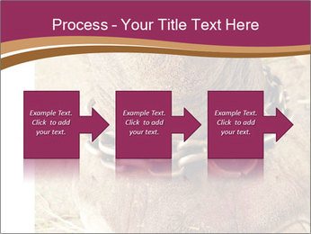 Chain For Elephant PowerPoint Template - Slide 88