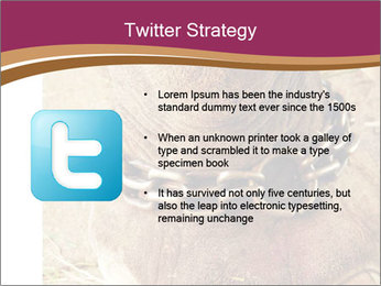 Chain For Elephant PowerPoint Template - Slide 9