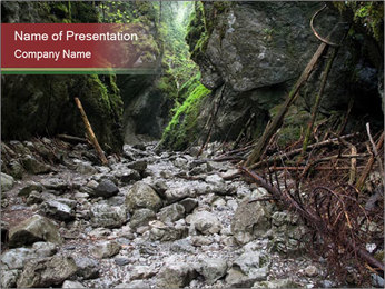 Wilderness PowerPoint Template - Slide 1
