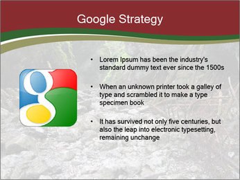 Wilderness PowerPoint Template - Slide 10