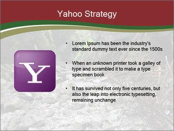 Wilderness PowerPoint Template - Slide 11