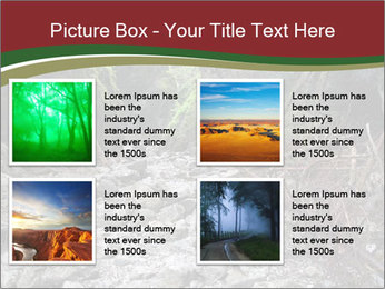 Wilderness PowerPoint Template - Slide 14