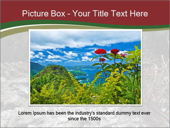 Wilderness PowerPoint Template - Slide 16