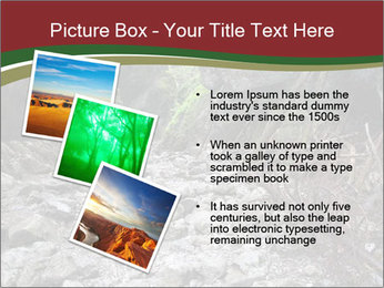 Wilderness PowerPoint Template - Slide 17