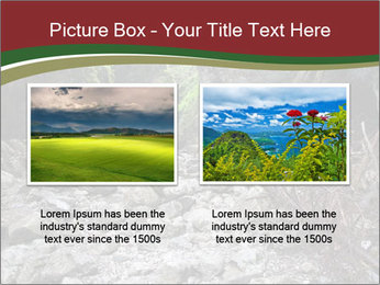 Wilderness PowerPoint Template - Slide 18