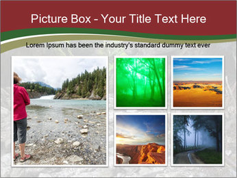 Wilderness PowerPoint Template - Slide 19